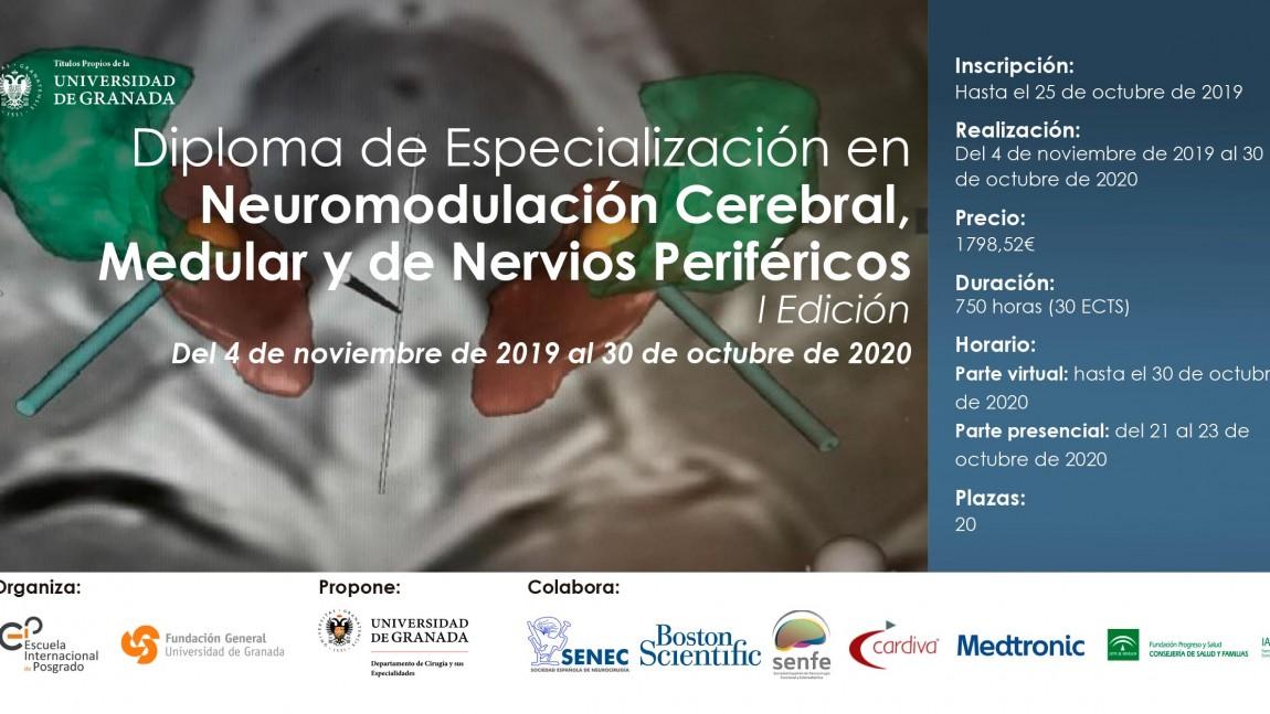 """Experto Universitario título propio de la universidad de Granada en:  """"Neuromodulación Cerebral, Medular y de Nervios Periféricos-Neurocirugia Funcional"""""""